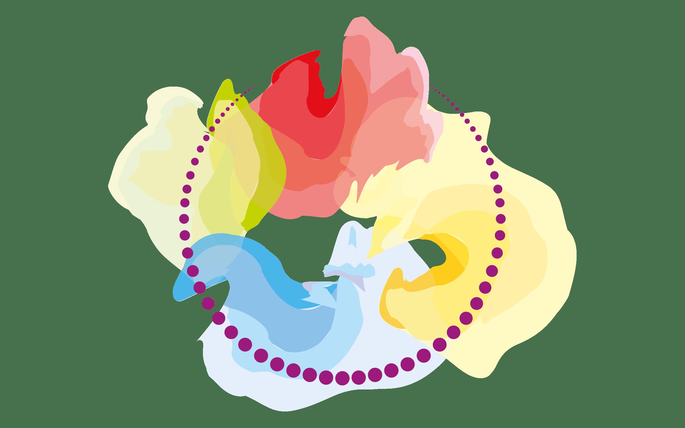 Vannes hypnose - Cédric Le Gac hypnothérapeute